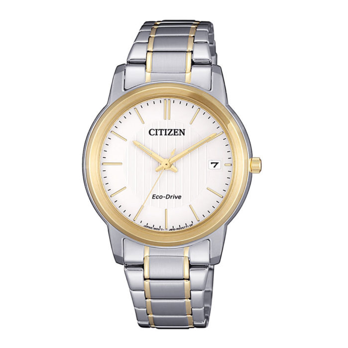 Citizen Eco-Drive FE6016-88A